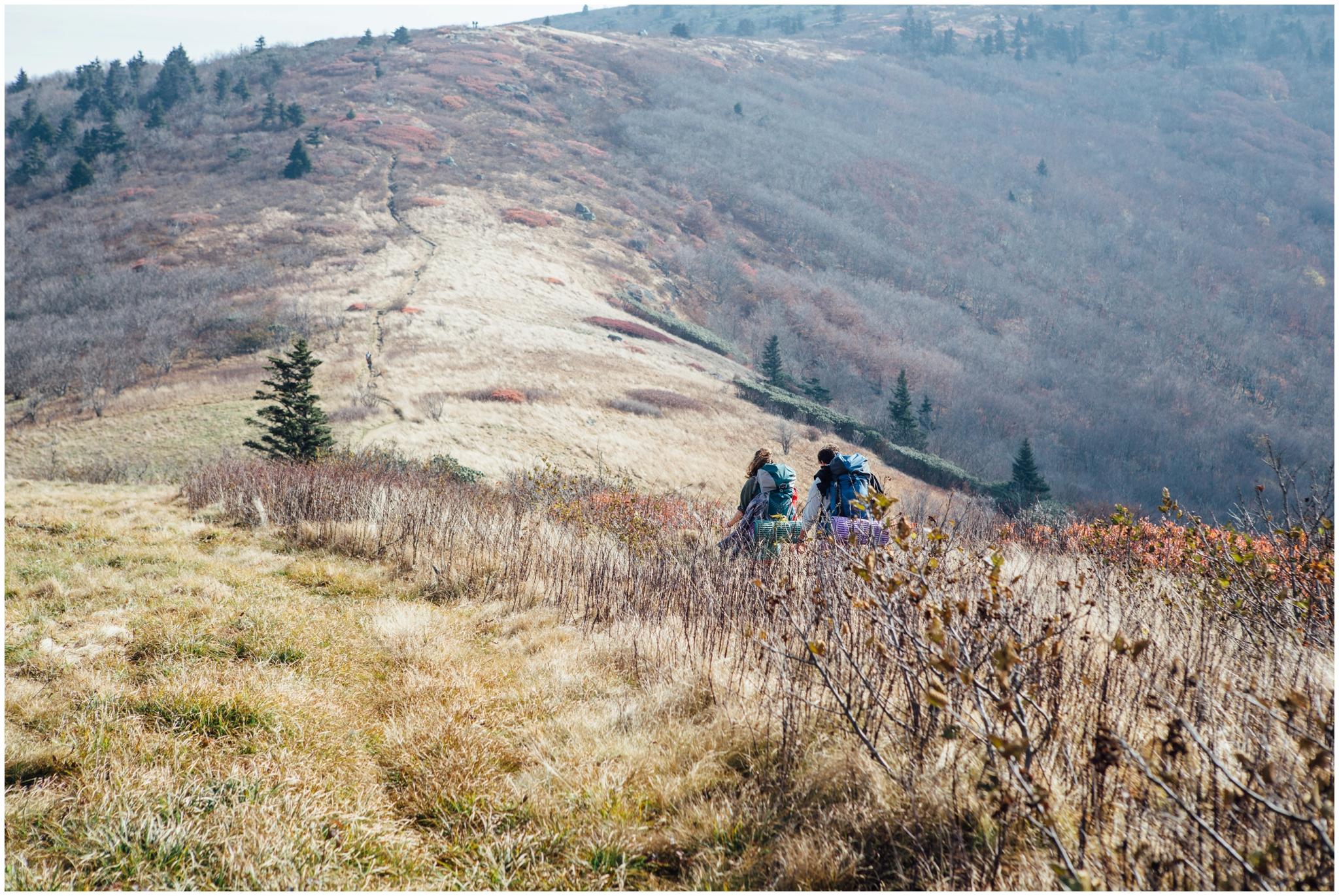 roan-mountain-carvers-gap-appalachian-trail-katy-sergent_0018.jpg
