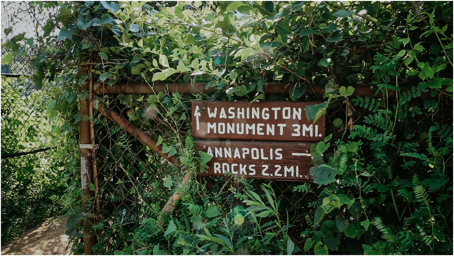 katy-sergent-photography-proposal-appalachian-trail-annapolis-rocks-adventurous-wedding-couples-intimate-elopement-hiking-backpacking-camping-photographer-johnson-city-tn-northeast-tennessee_0005.jpg