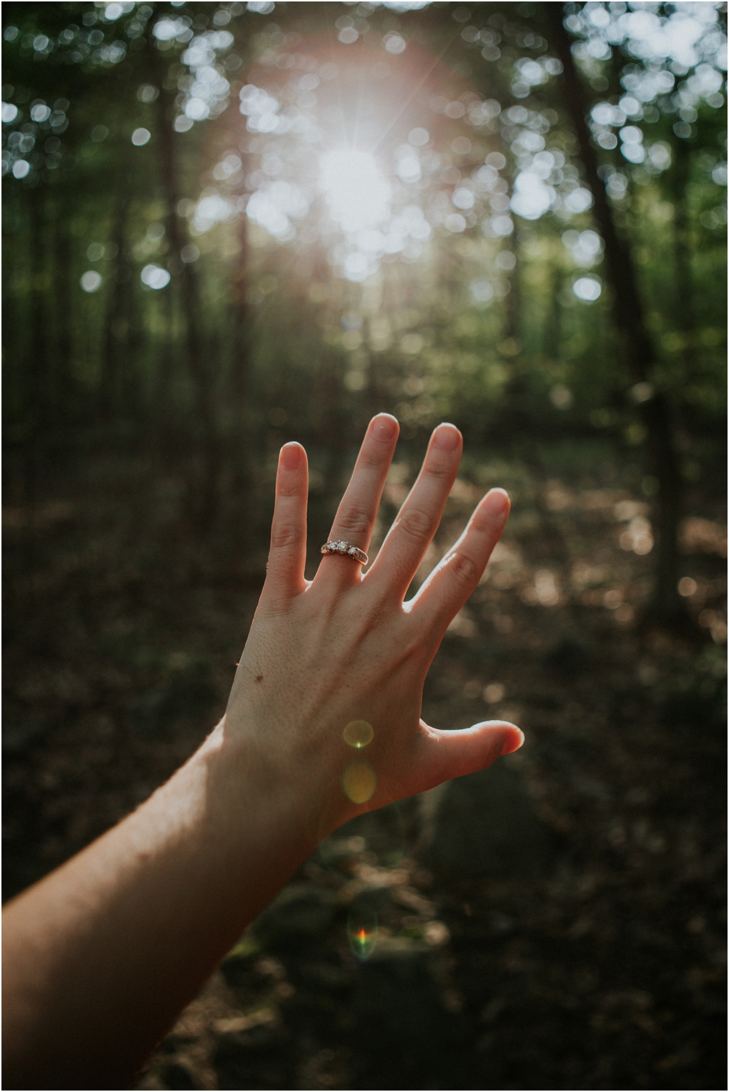 katy-sergent-photography-proposal-appalachian-trail-annapolis-rocks-adventurous-wedding-couples-intimate-elopement-hiking-backpacking-camping-photographer-johnson-city-tn-northeast-tennessee_0019.jpg