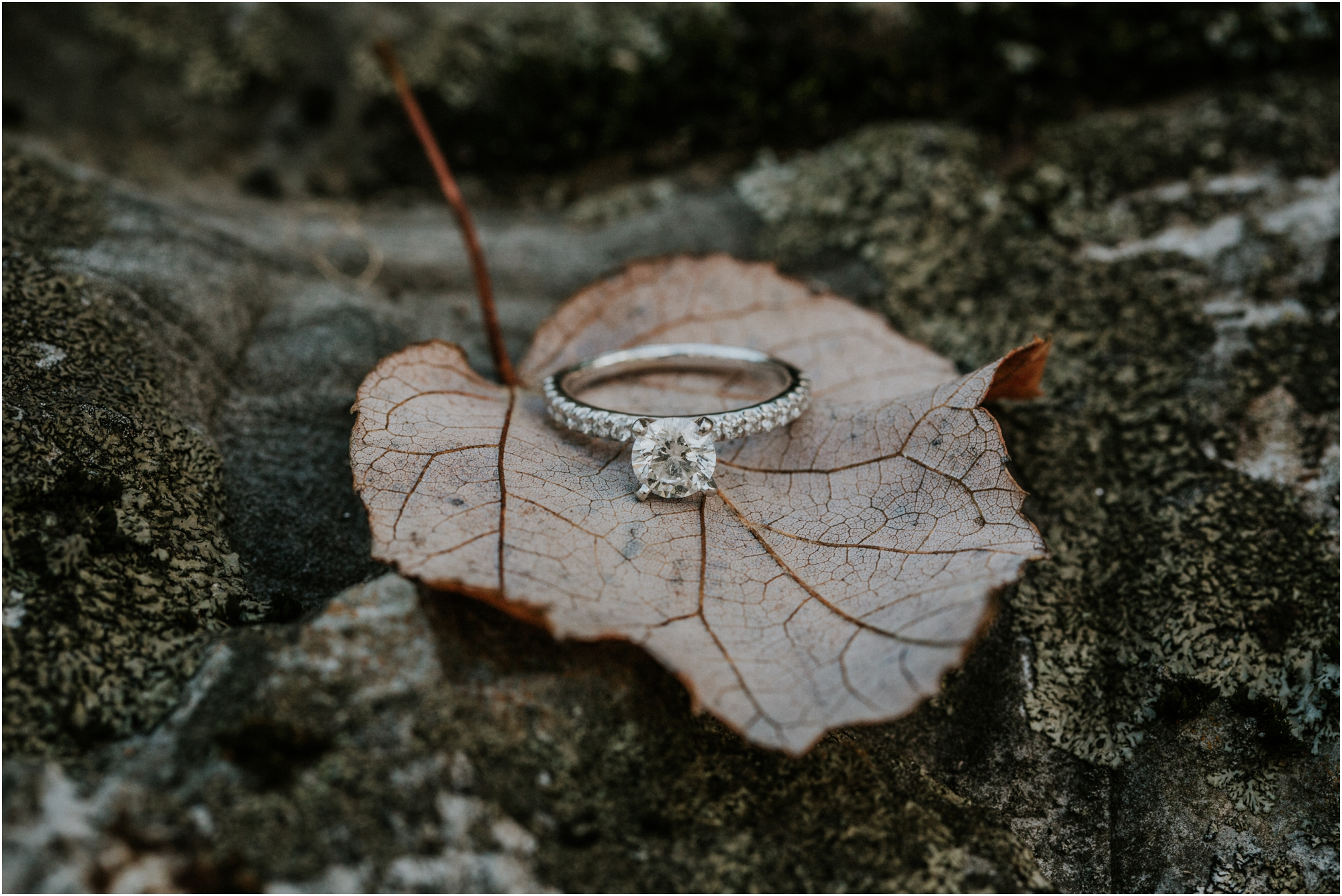 katy-sergent-millstone-limestone-tn-rustic-fall-engagement-session-adventurous-outdoors-intimate-elopement-wedding-northeast-johnson-city-photographer_0008.jpg