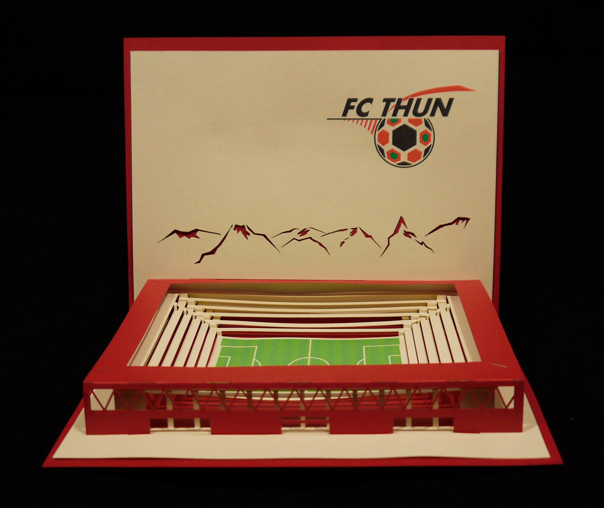 FC_Thun_2.jpg