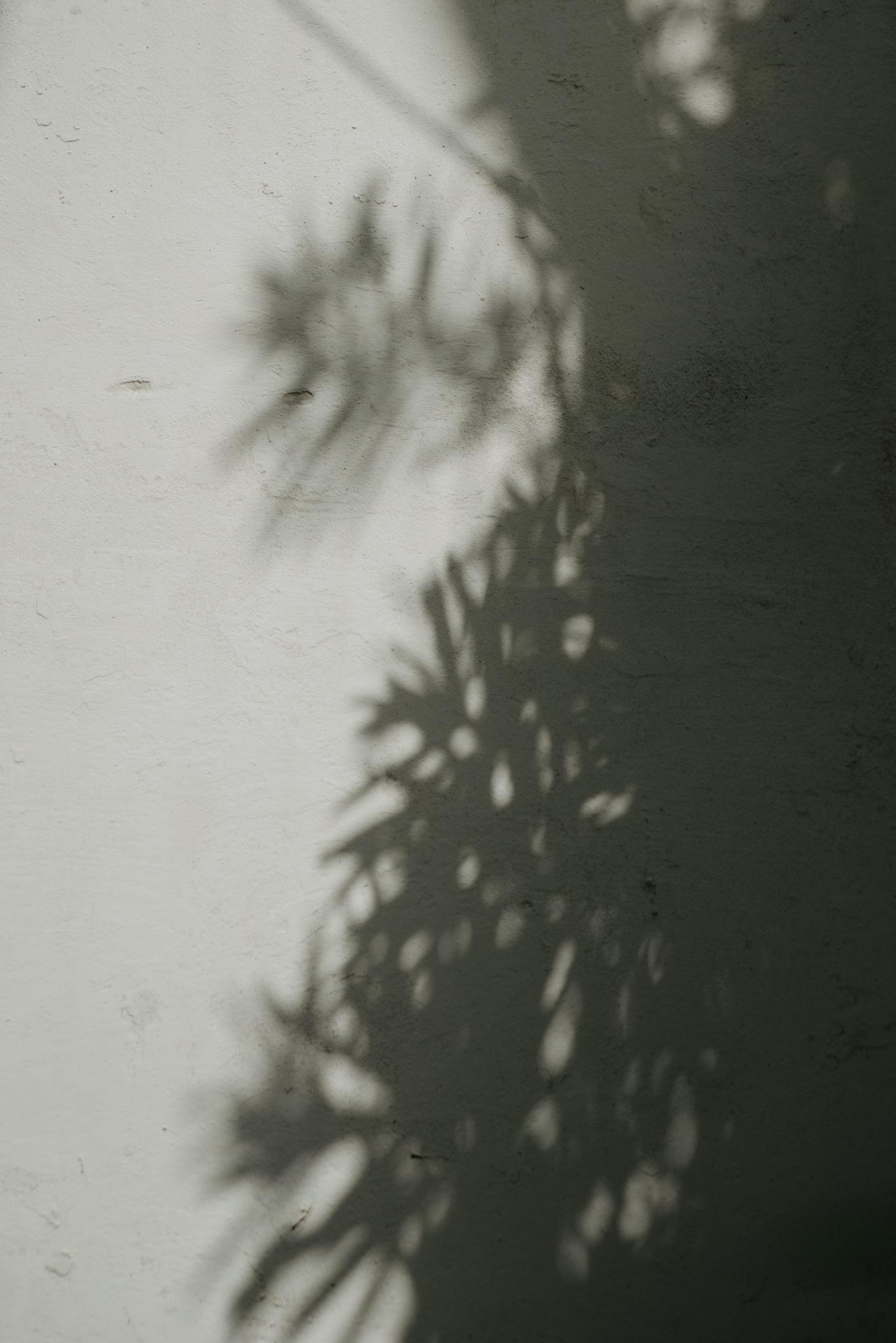 Anita-Simon-23_WEBB.jpg