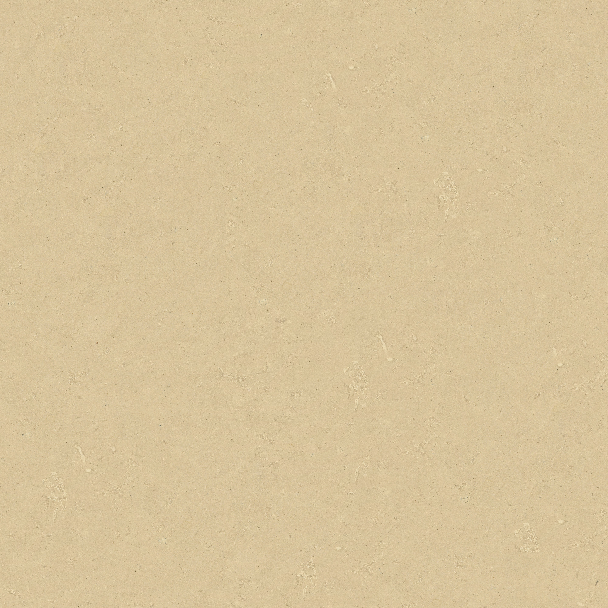 granada beige.jpg