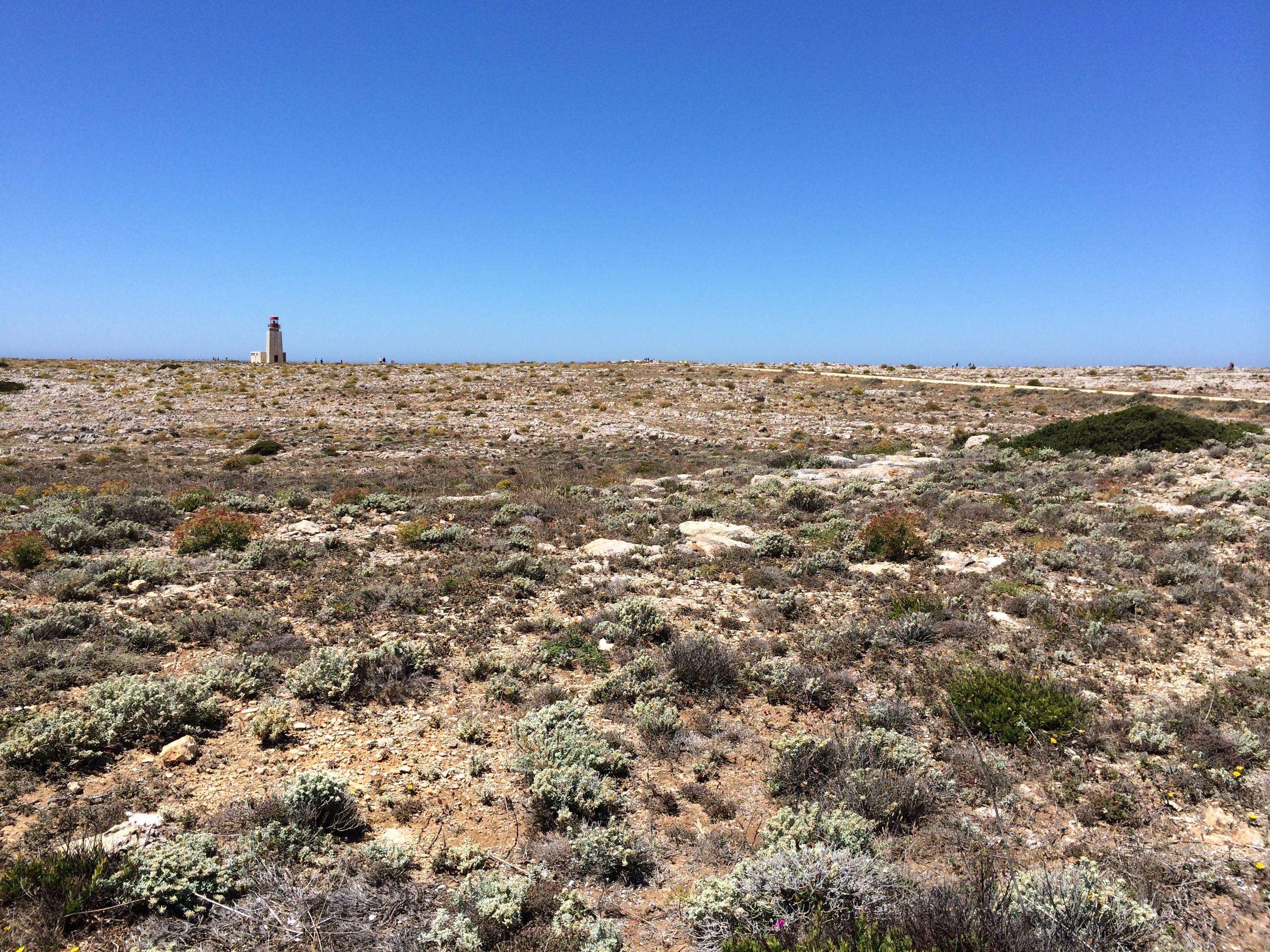The peninsula has a really unforgiving terrain. If it weren't for the wind I'd feel I was in a desert.