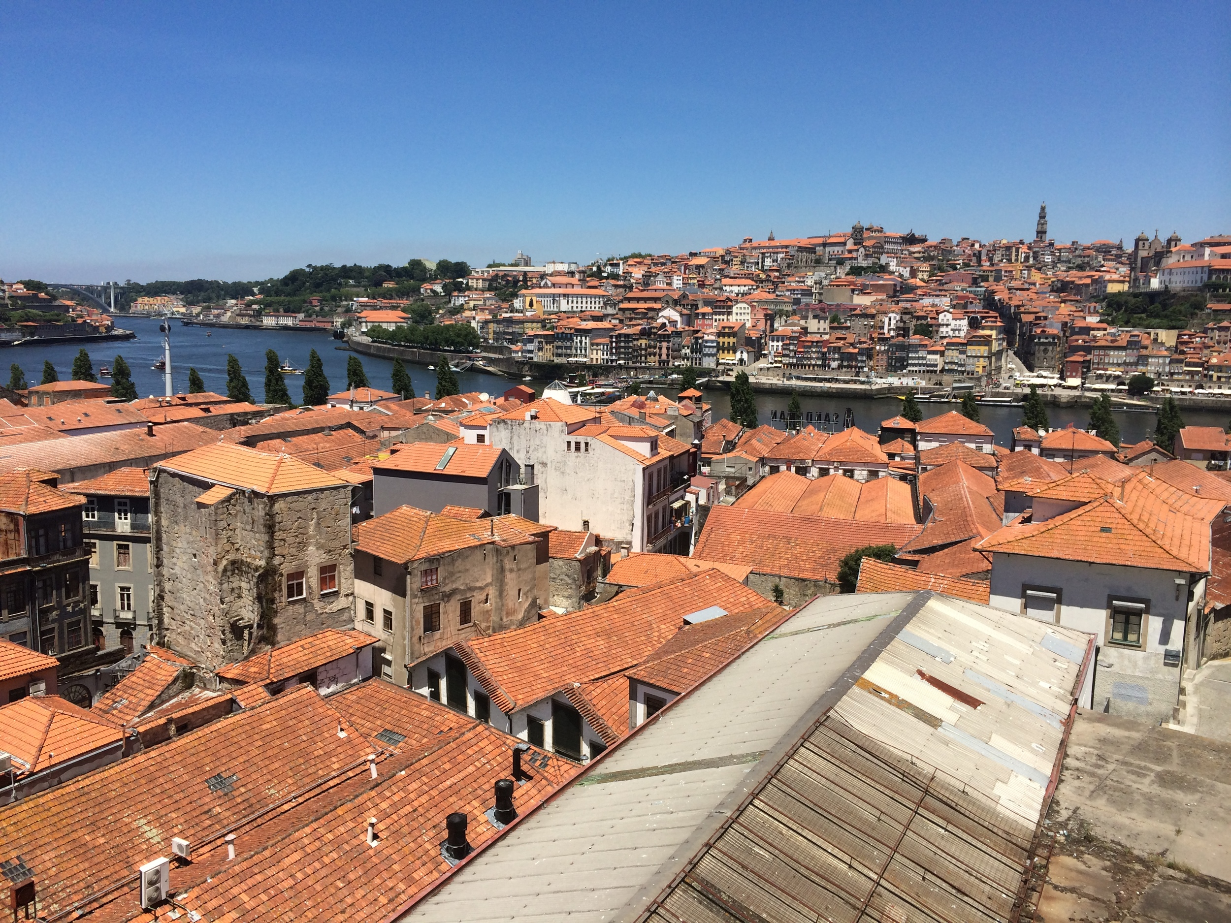 Picture of Porto from my hike through Gaia to the Taylor Fladgate Distillery.