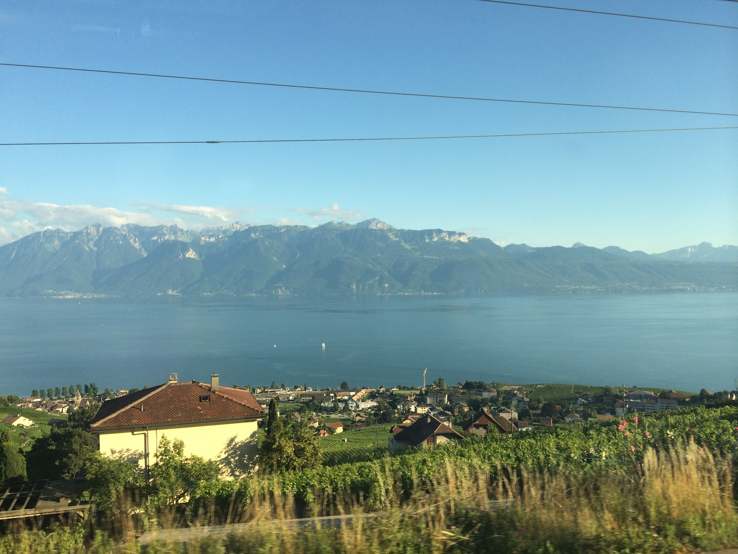 So far every picture I've take from a train looks terrible... except in Switzerland.