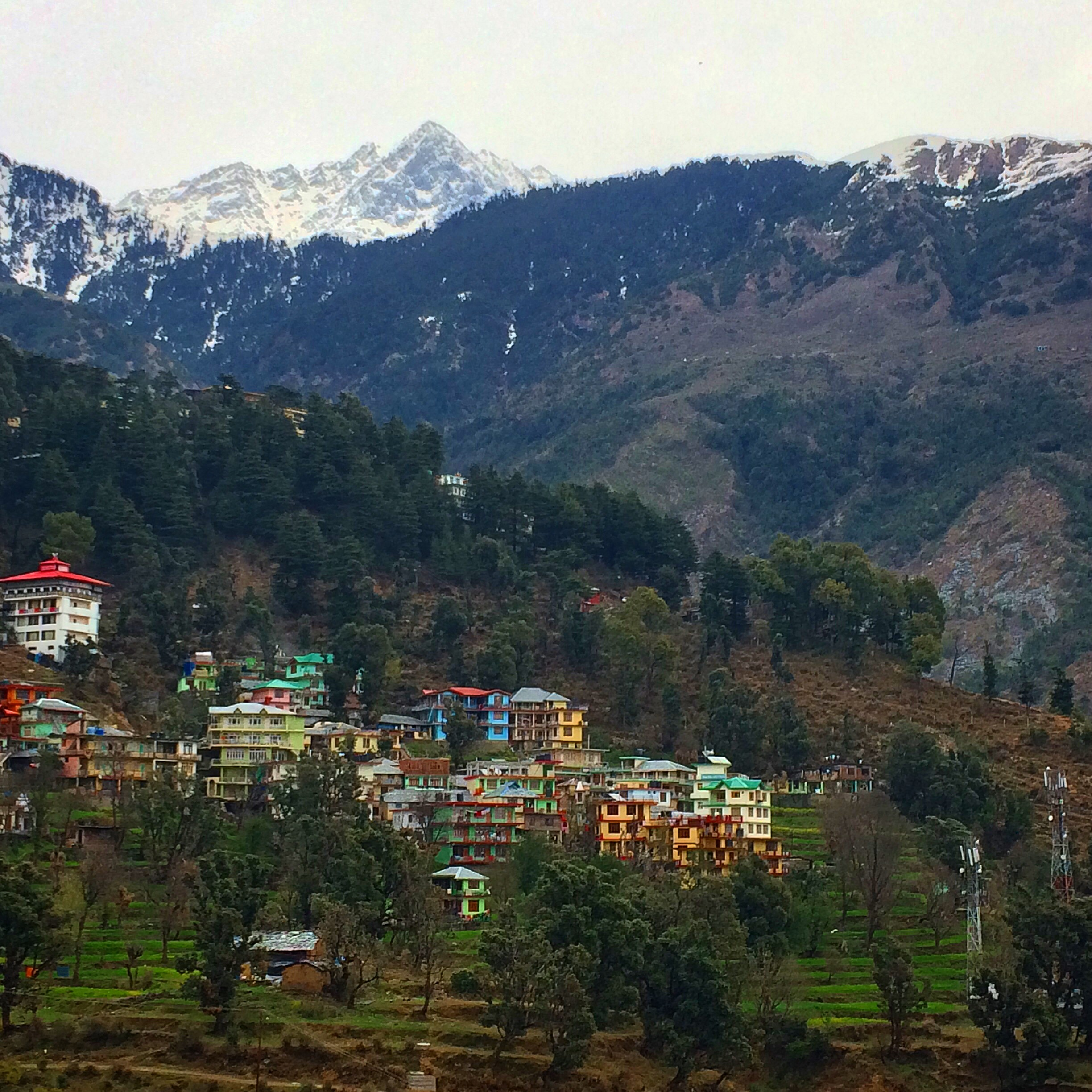 At the foot of the HIMALAYAS in Dharamsala, India.