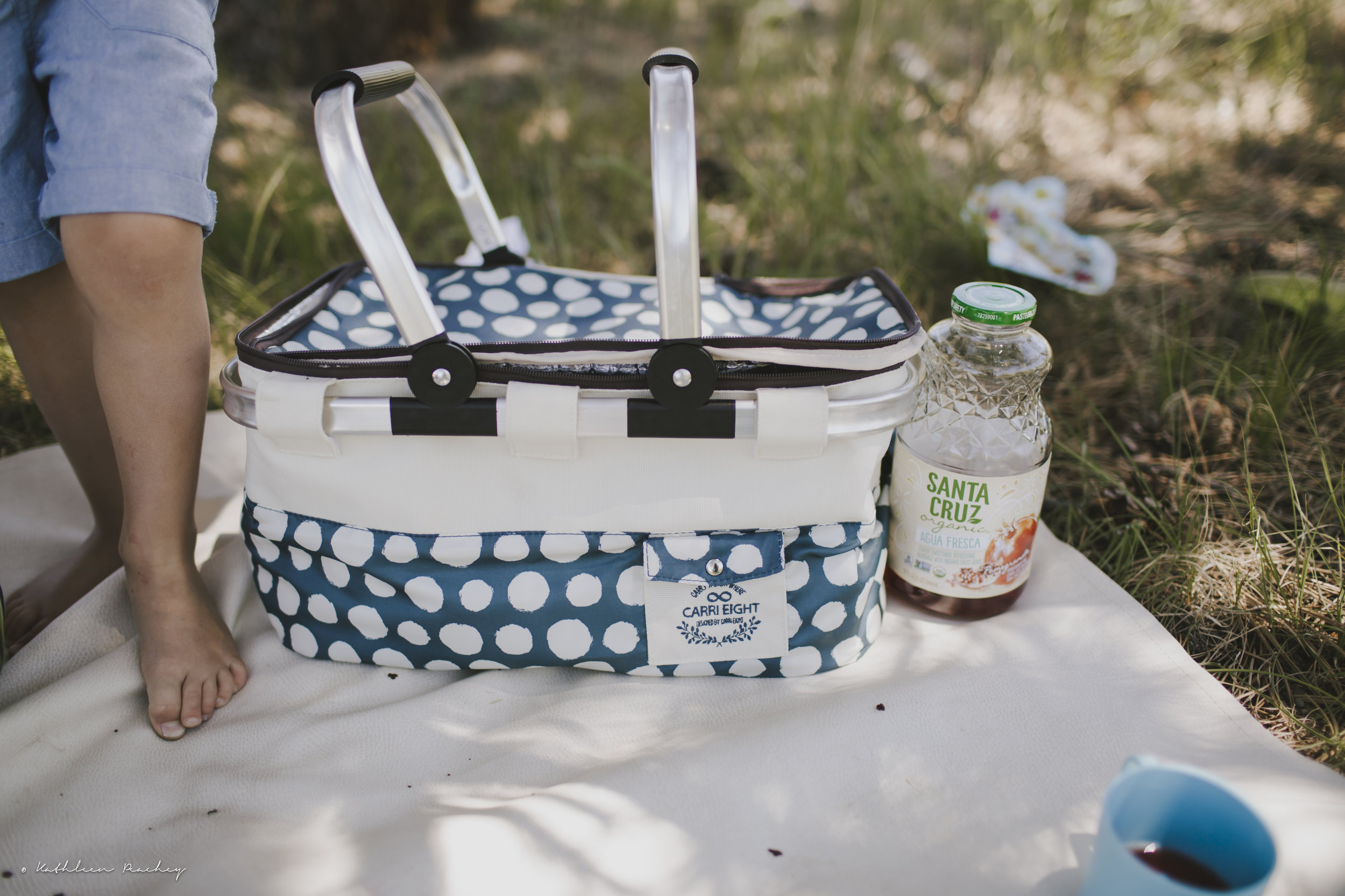 lifestyle photography picnic