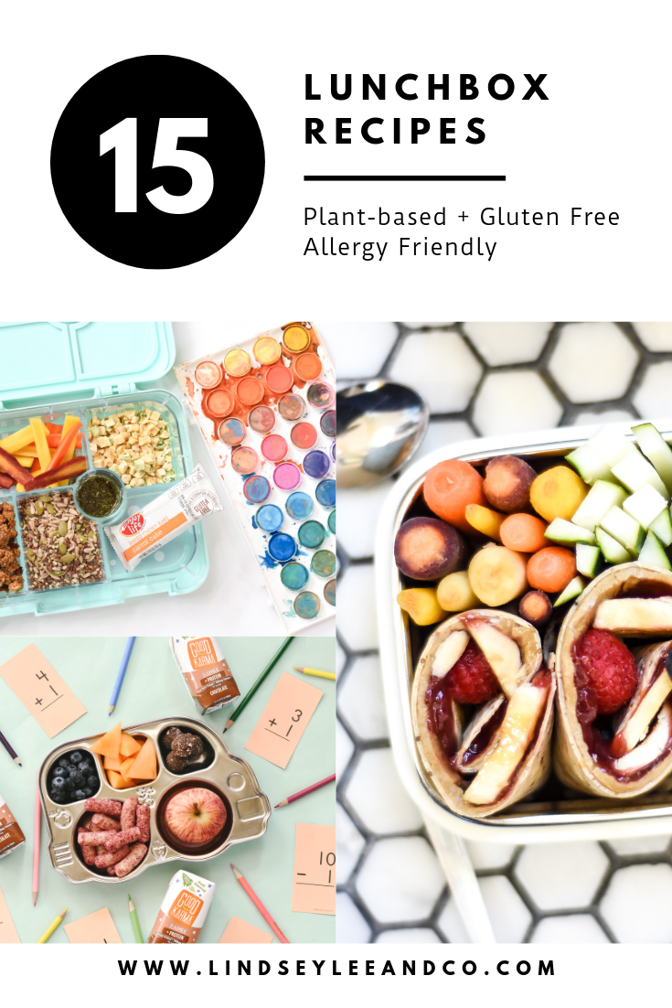 15 Fun Lunch Box Ideas. 15 simple lunch box recipes to bring your lunches from boring to brilliant. Easy gluten free, dairy free, vegan, nut free, peanut free, allergy friendly lunch box ideas with Lindsey Lee and Co.