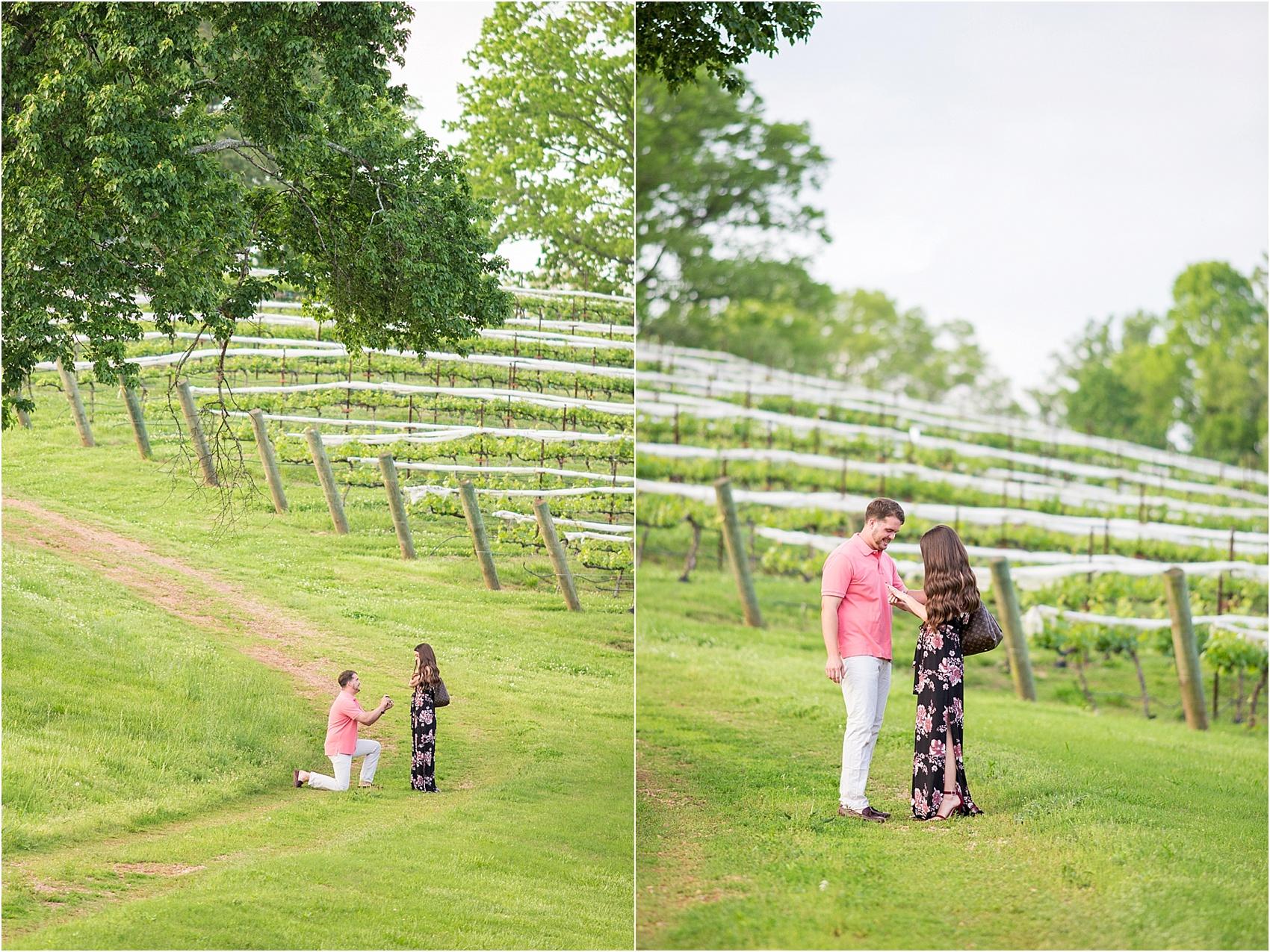 Kinsey Proposal- highlights-2.jpg