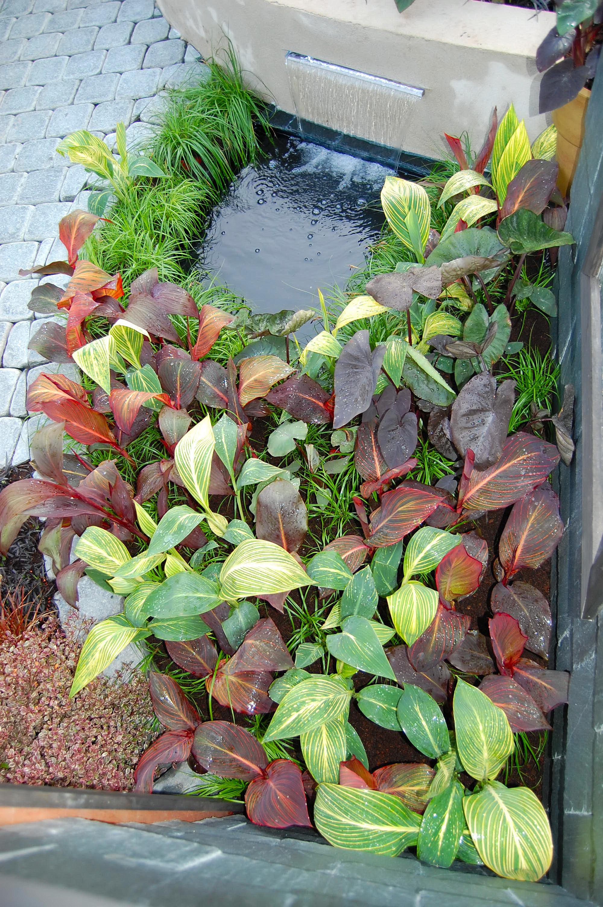 bloom 2010 199.jpg