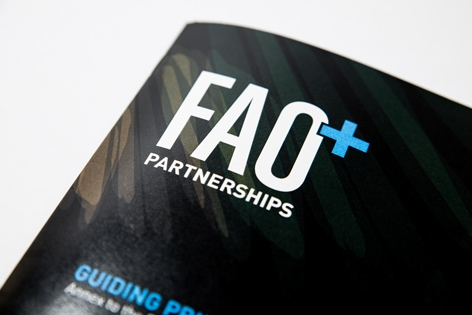 FAO-Partnerships-013.jpg