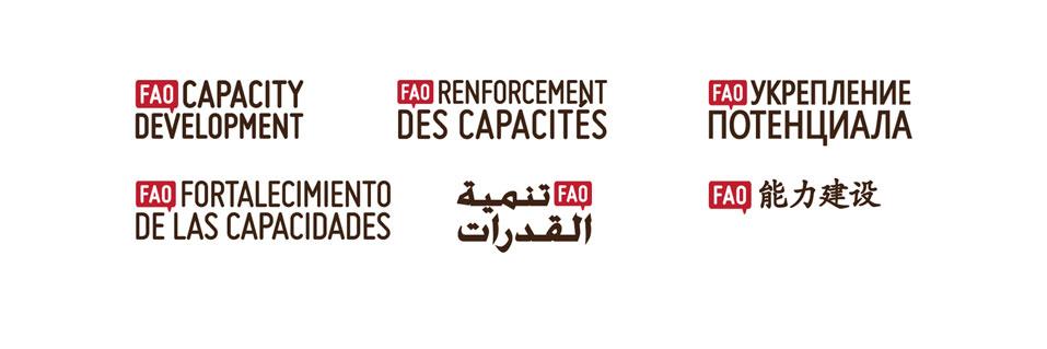 FAO_Capacity_logos.jpg