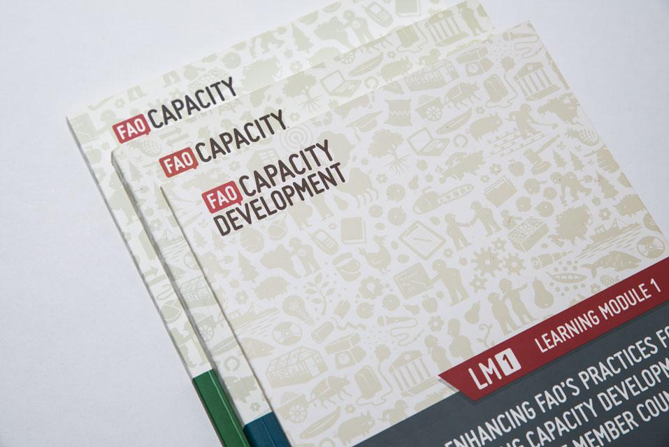 FAO-Capacity_Development-026.jpg