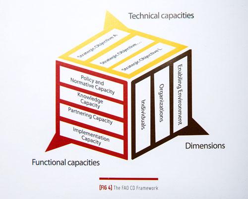 FAO-Capacity_Development-041.jpg