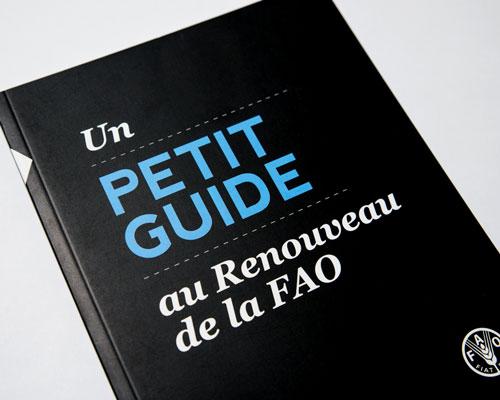 FAO-Rough_Guide-008.jpg