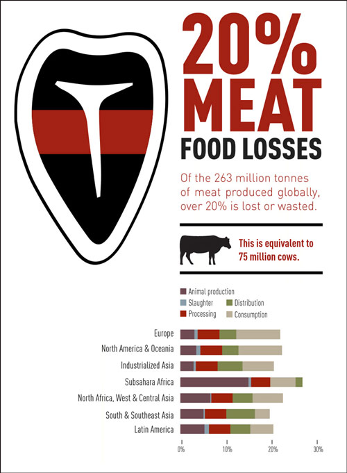 infographic-Meat.jpg