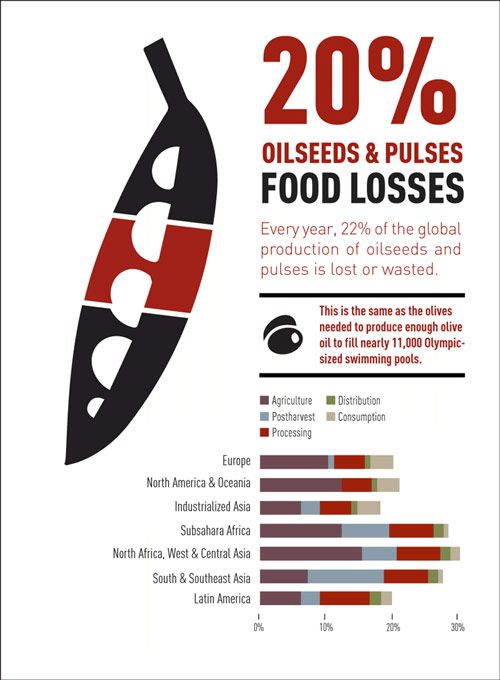 infographic-Oilseeds.jpg