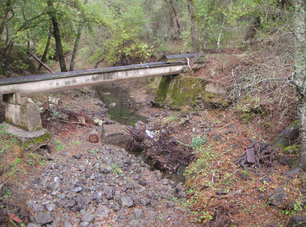 Degraded creek below Searsville Dam