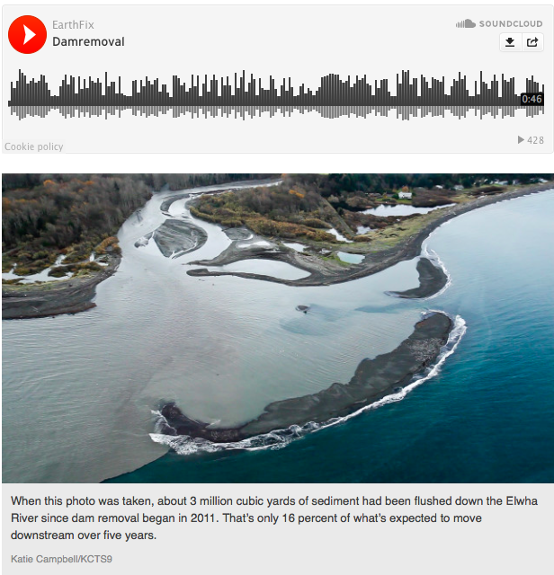 """Rivers Recover Rapidly Once Dams Are Gona, Study Finds     Oregon Public Broadcasting / April 30, 2015  A new study sums up what scientists now know about the environmental effects of removing dams from rivers.It concludes that rivers and fish respond quickly after a dam is removed, and the results are mostly positive.  """"Heraclitus has said you can't step in the same river twice,""""said study co-author Gordon Grant. """"Well, you don't get exactly the same river back after you take a dam off it that you had before, but you can come pretty close. In some cases, it can even be difficult to identify in just a few years where the dam was.""""Rivers often disperse the extra sediment from behind a dam within weeks or months of dam removal, the study finds. Migratory fish move swiftly to recolonize newly accessible habitat – at times swimming past the former dam site within a matter of days.  The research, published Thursday in the journal Science , compiles the findings of more than a hundred studies on individual dam removals.    Read more at:   http://www.opb.org/news/article/rivers-recovery-rapidly-once-dams-are-gone-study-finds/"""