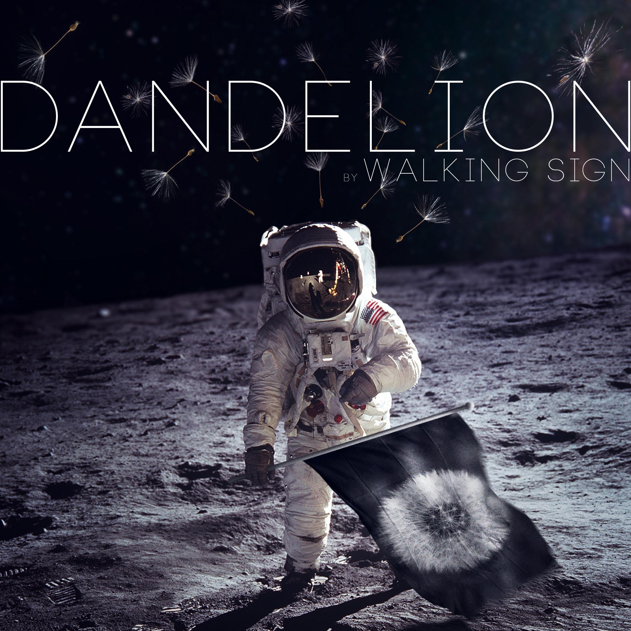 Dandelion Promo_1.jpg