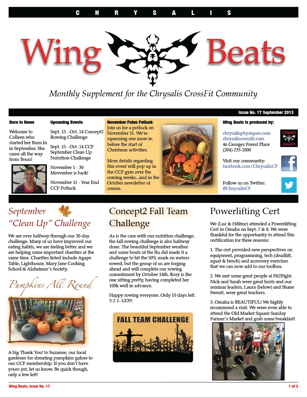 WingBeats Issue #17 - September 2013