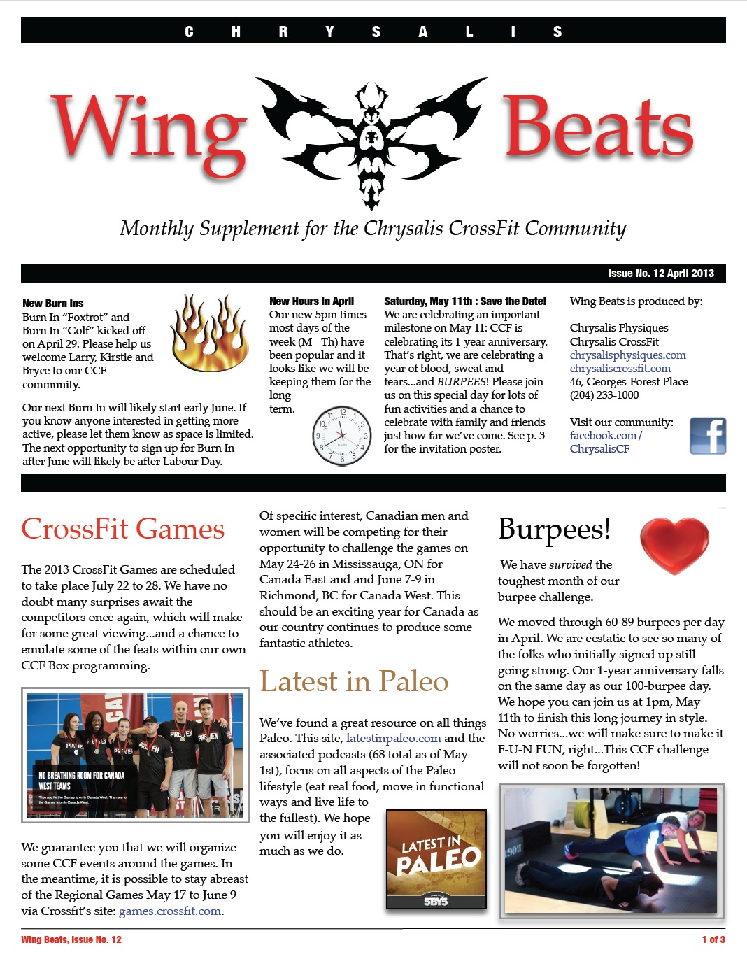 WingBeats Issue #12 - April 2013