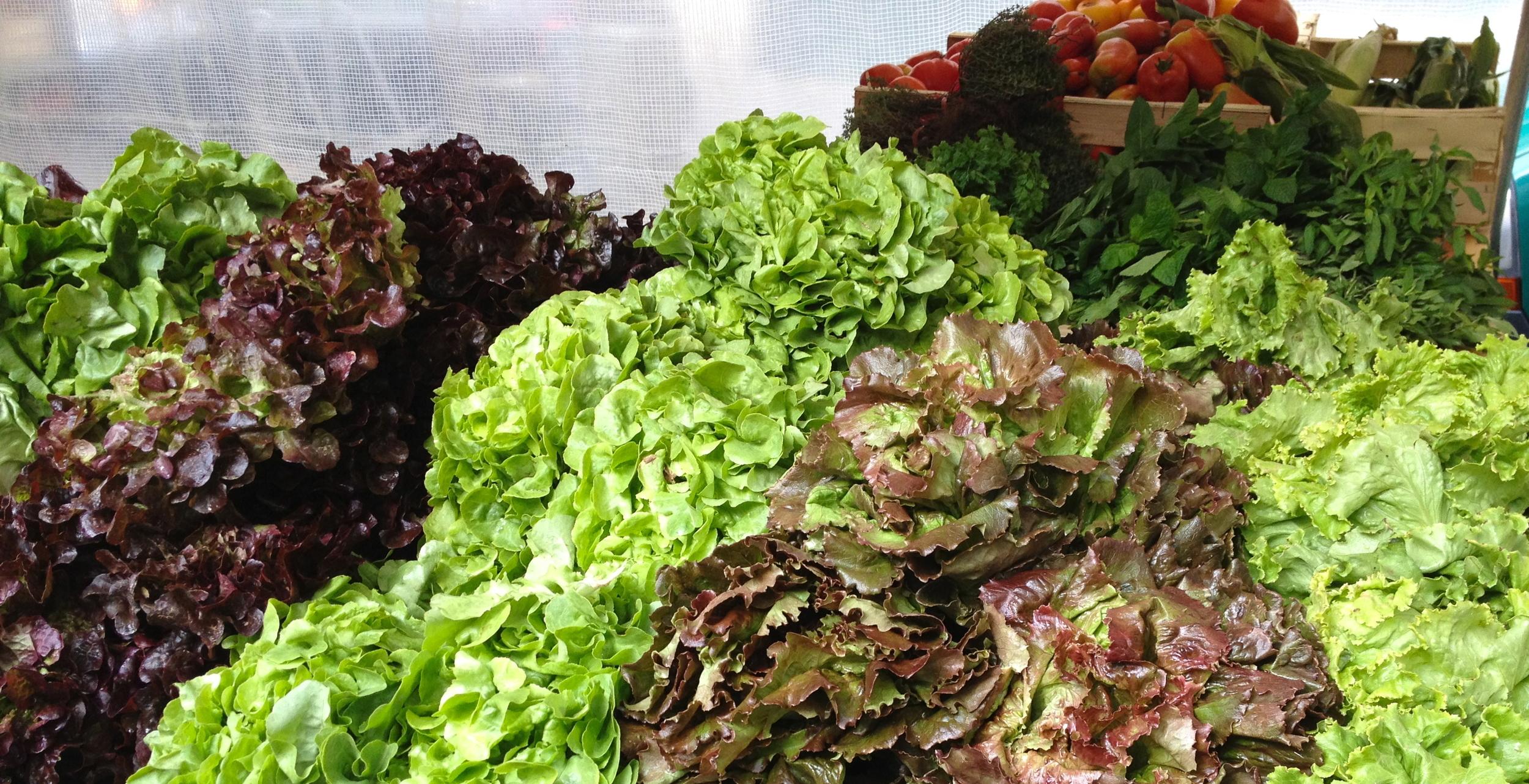 Lettuce at the organic market in Paris