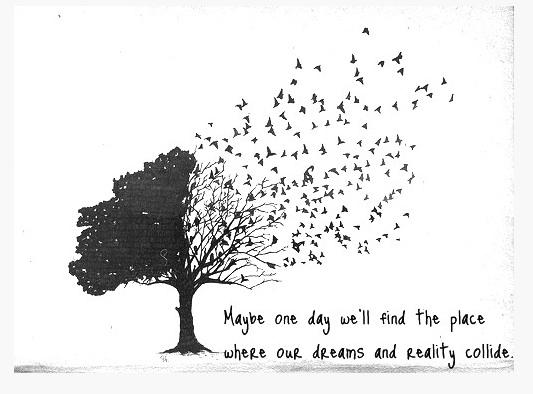 dreams and reality.jpg