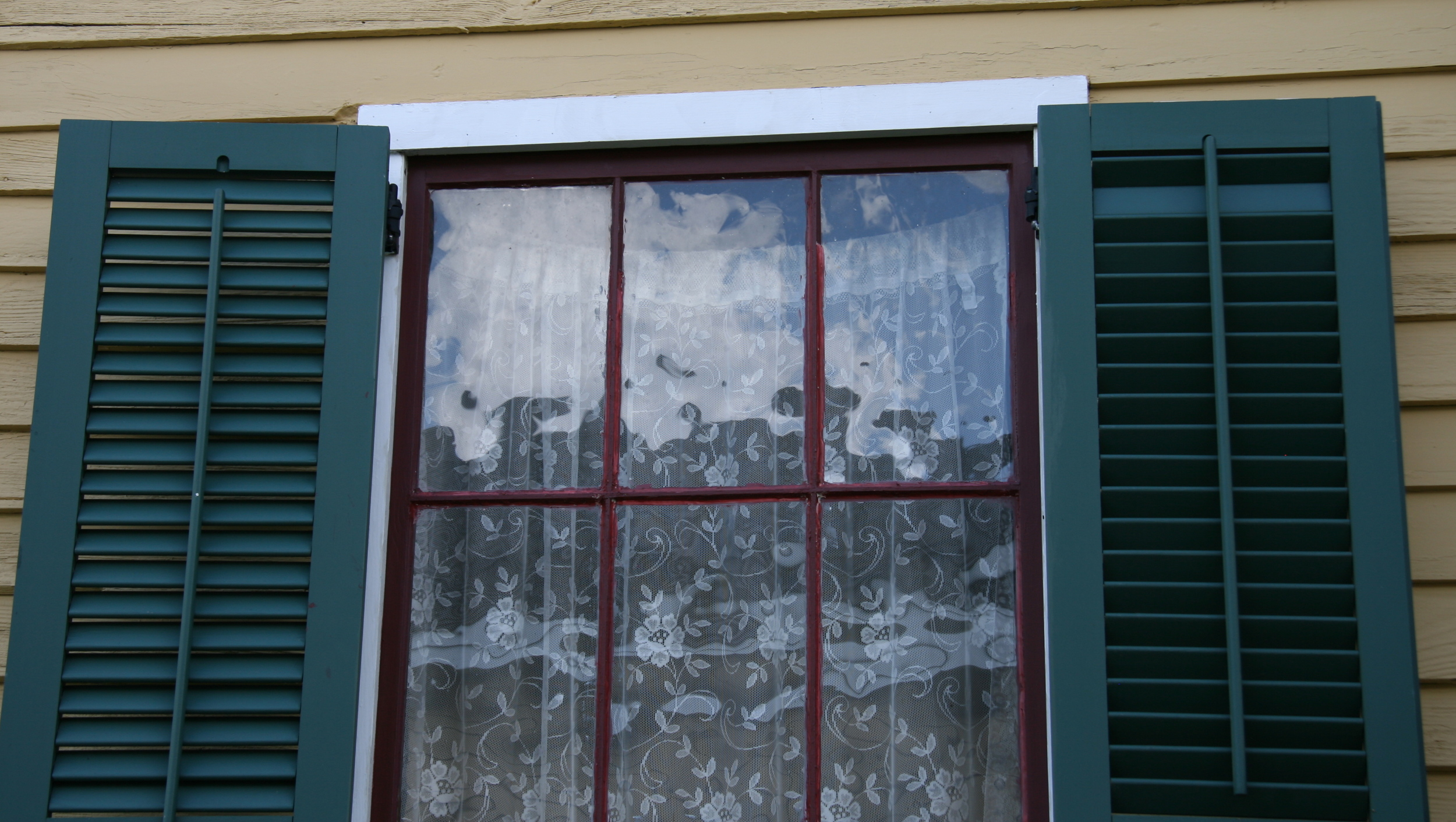 lace curtains.JPG