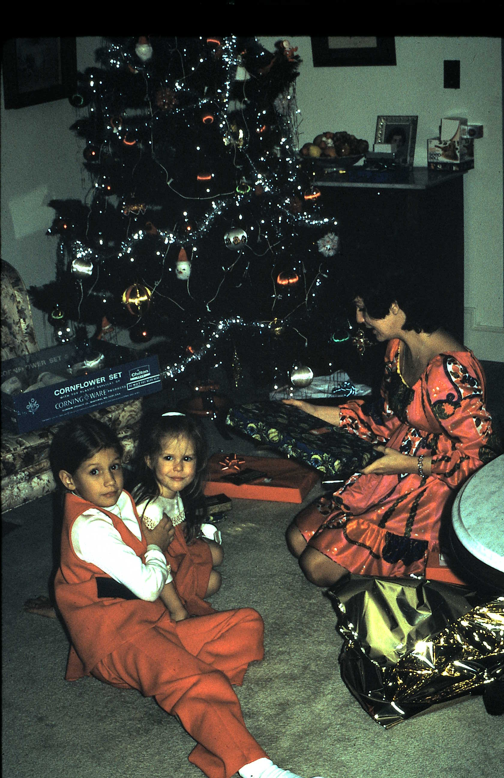 Christmas 1972…I am 9 and my cousin Lisa McRae must be 2 or 3….