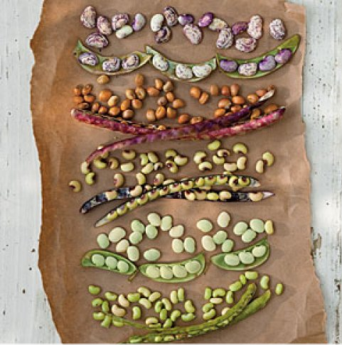 image from Southern Living Beth Dreiling Honztas