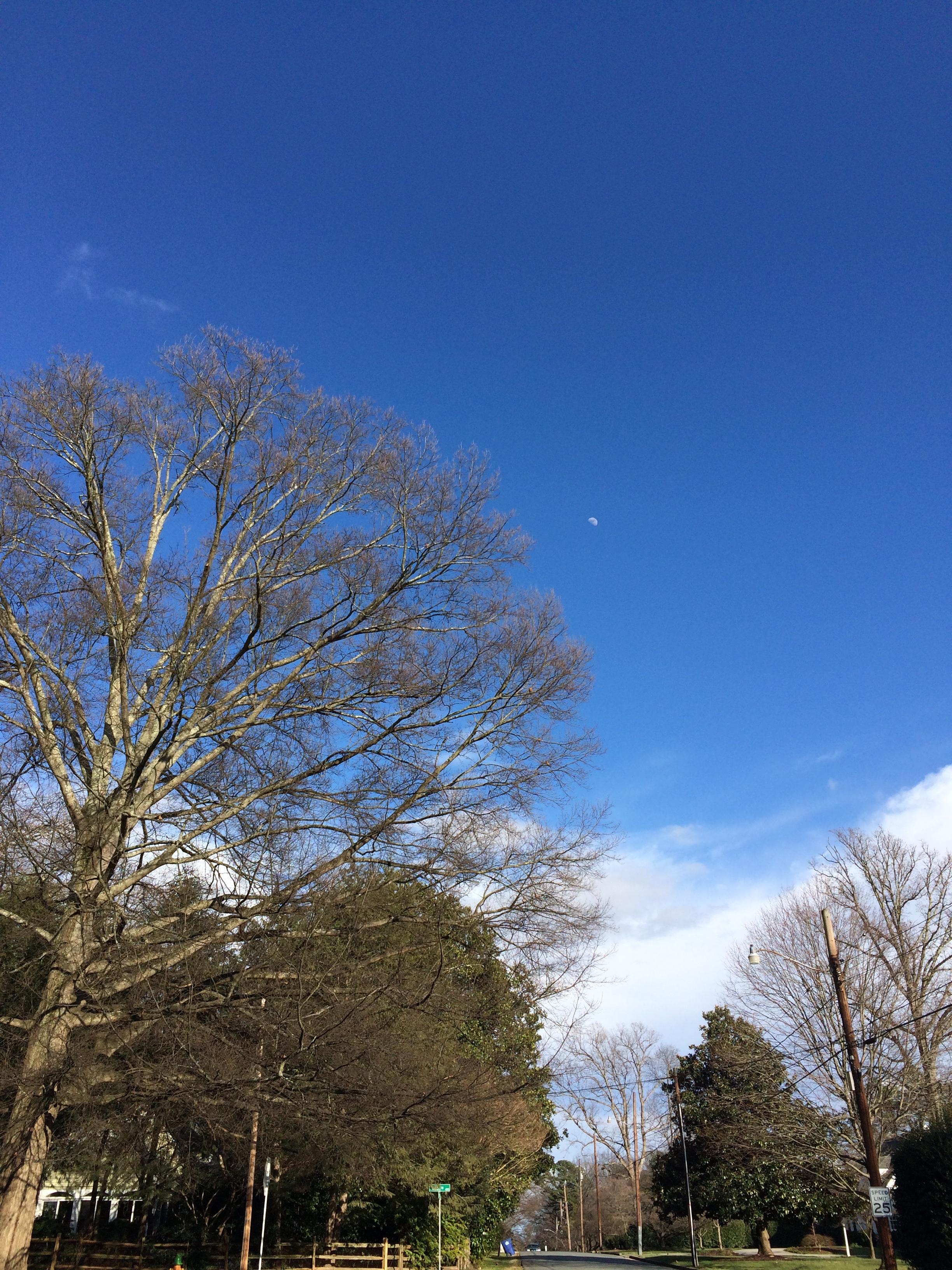 a beautiful day last week