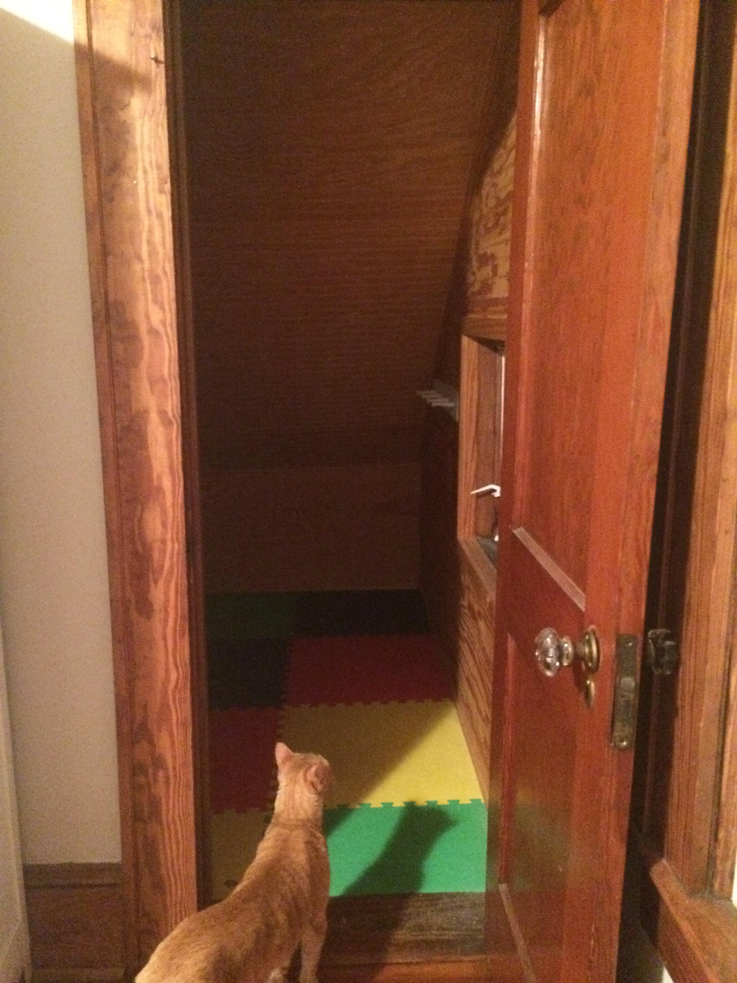attic closet from bedroom