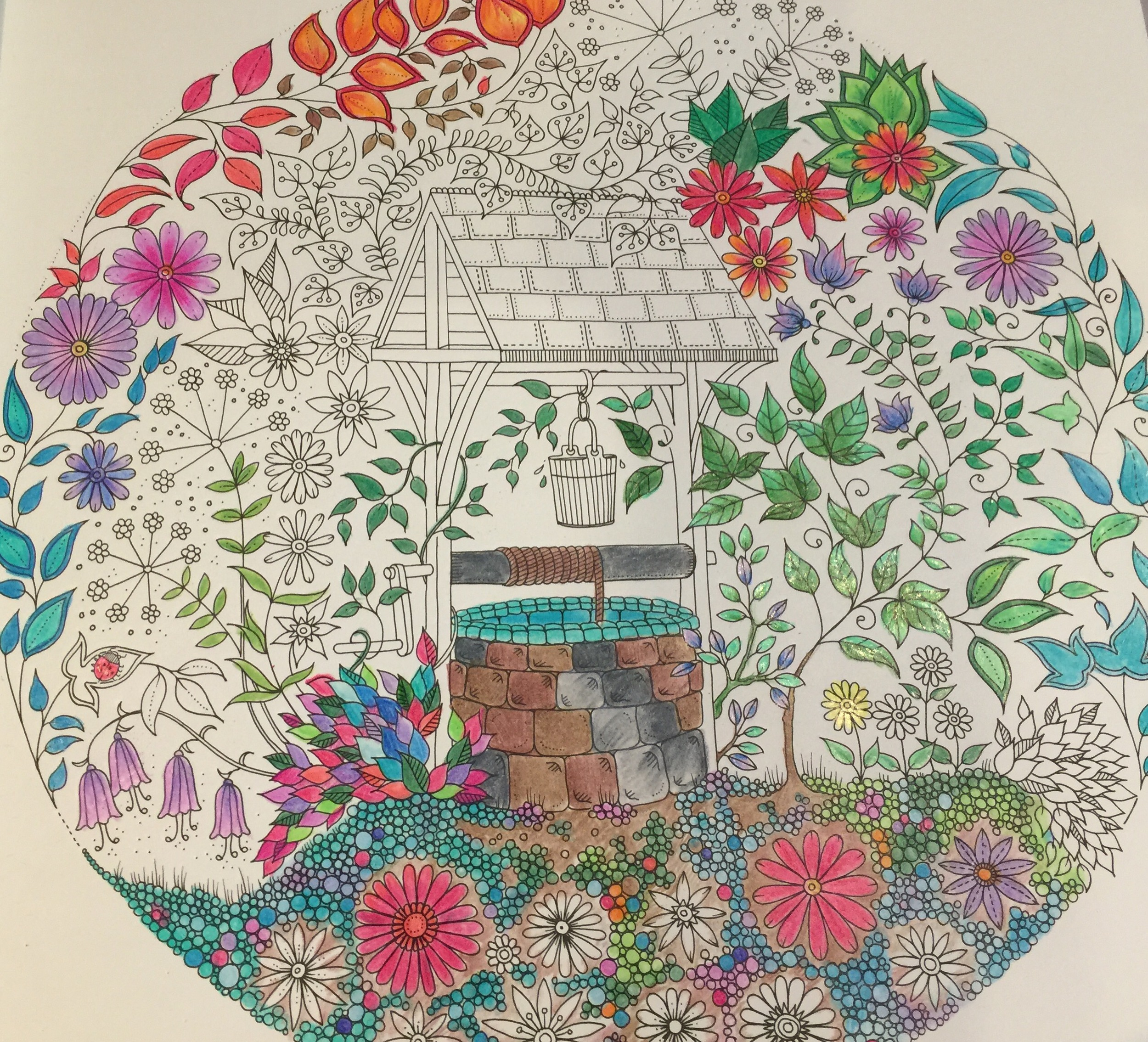My work in progress with Coloring Pencils, Secret Garden: an inky treasure hunt and coloring book by Johanna basford