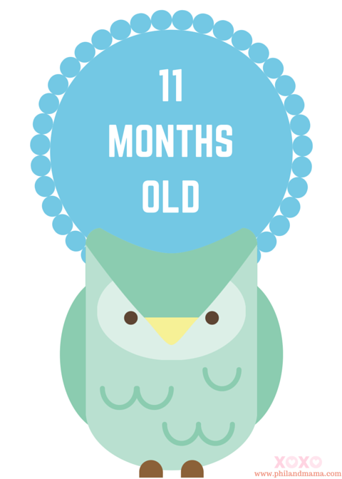 Animal-themed baby monthly milestone sign, 11 months old!