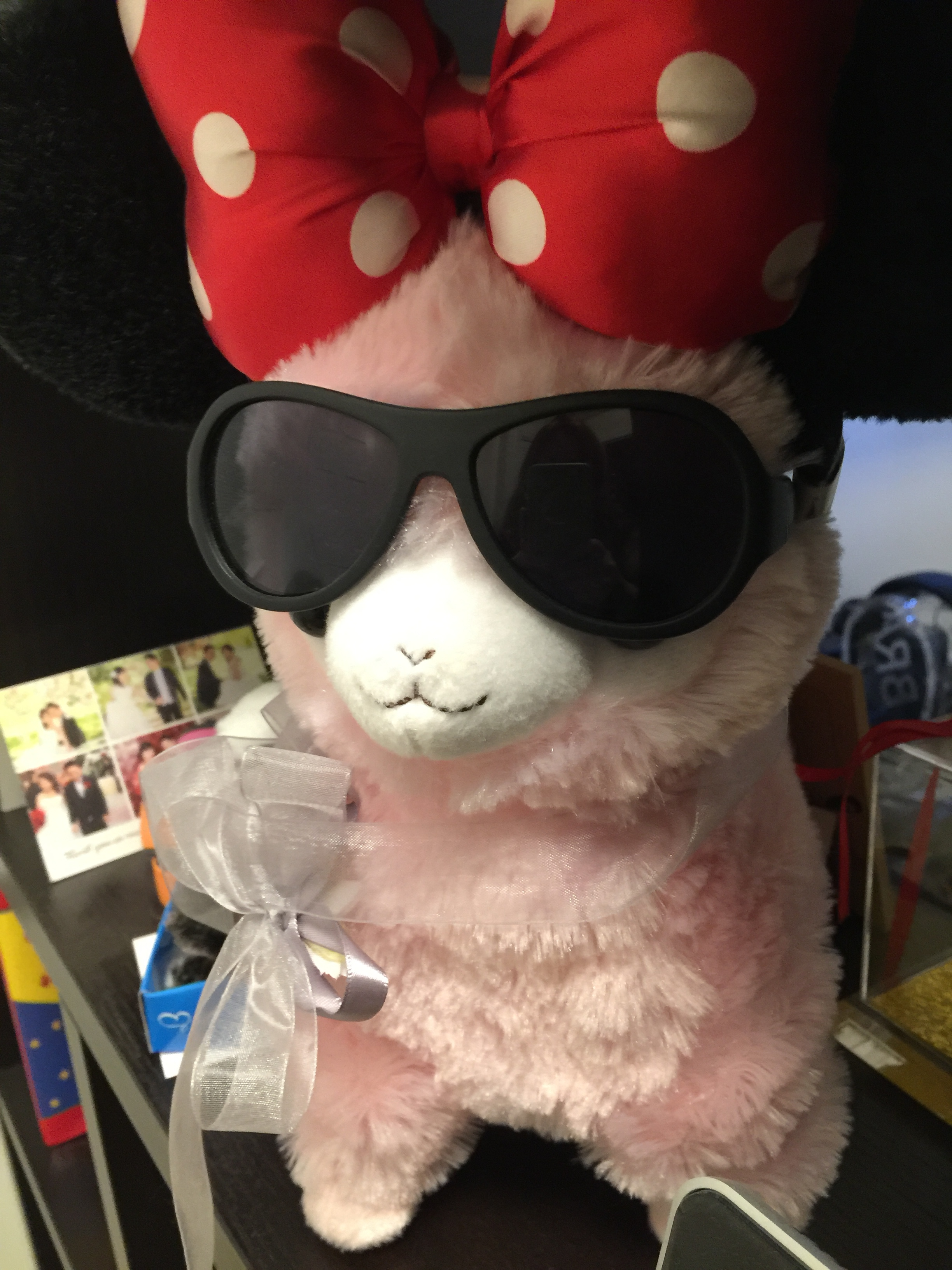 i got this cute walking and singing alpaca from a ufo machine in tokyo. BESt alpaca toy ever...