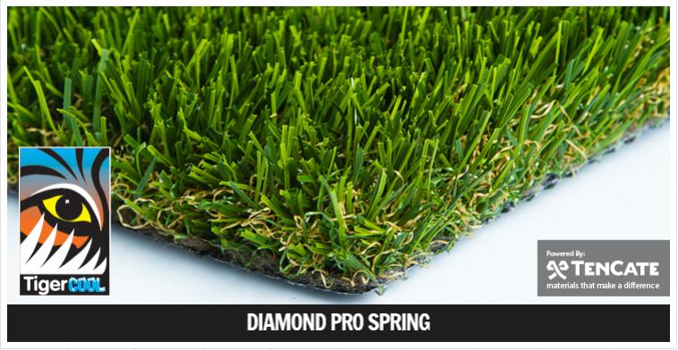 Diamond Pro SPring.png