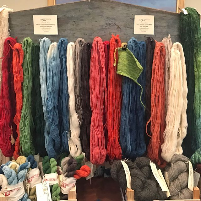 Wonderful day yesterday at the @theyarnsellar 's 6th annual #fibermarketplace at the @yorkharborinn! Thank you so much to everyone who came by to ogle yarn and geek out over fiber! And thank you to @theyarnsellar and @yorkharborinn for hosting such a wonderful event! 💙🌱🧶 After the booth was put to bed we took a lovely walk along the ocean side cliff walk across the street from inn. I wish I had taken more photos (the day was glorious!) but I did get this lichen photo for color inspiration.  #uptonyarns #knitlocal #naturaldyesnewenglandwool #naturaldyes #naturaldyer #uptonvends #maineyarn #mainefleece #ganseyyarn #strawsfarmislandsheep #ganseybirdkits #ganseybird #birdsbyhand #copperriverdeltashorebirdfestival #copperriverdeltabirdsbyhandproject
