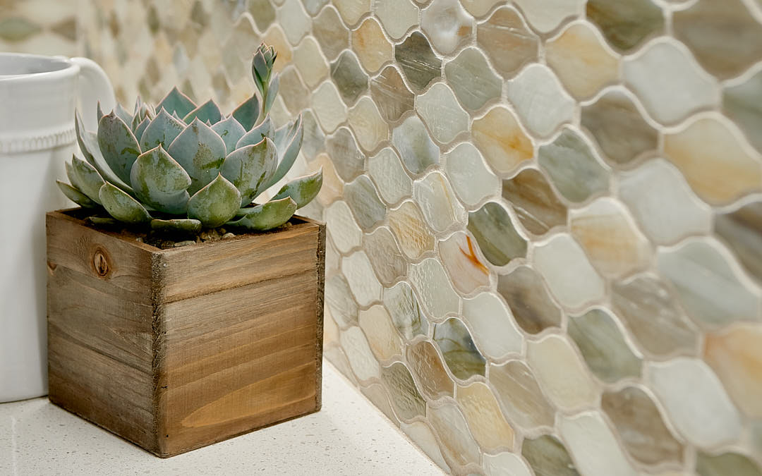 Close up photograph showing the back splash and a small Aloe Vera plant in Half Moon Bay, CA kitchen.  Photographed by Dean Birinyi, interior photographer in San Francisco, CA.