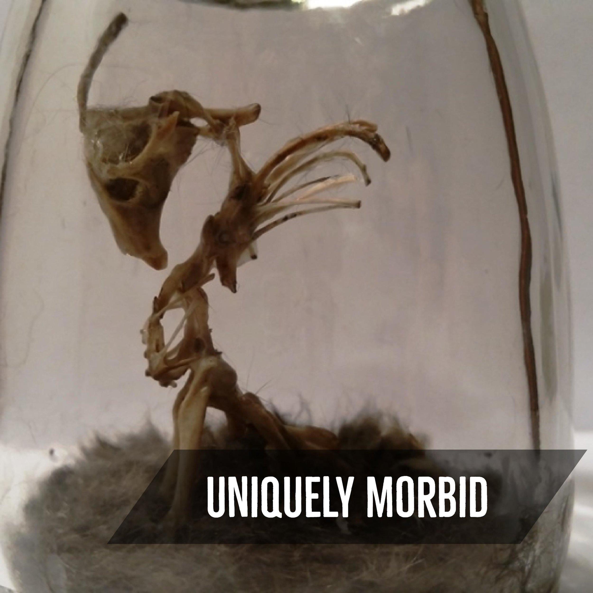 Uniquely Morbid