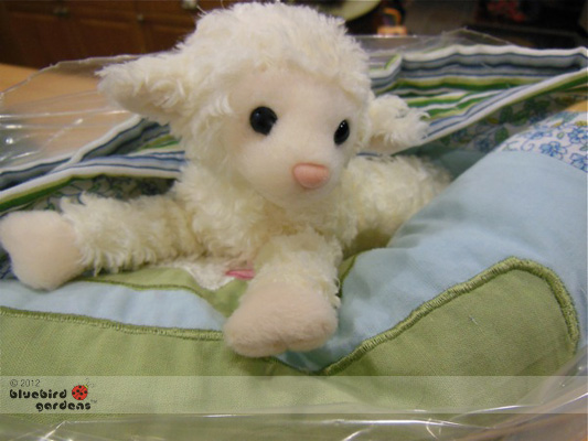 BABY QUILTS SHIPPED WITH COMPLIMENTARY TOY