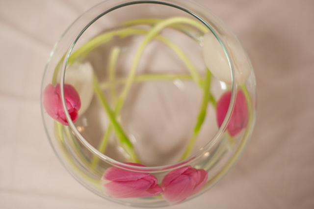 Evelisa Floral & Design: Modern