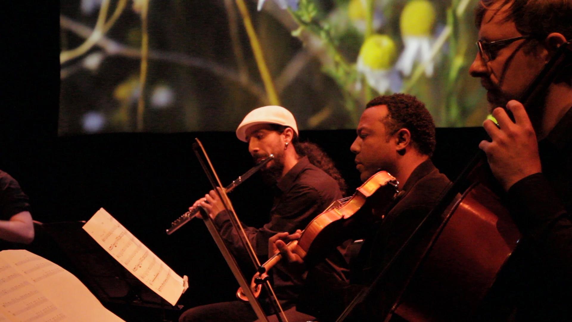 Musicians Argentina Screen.jpg