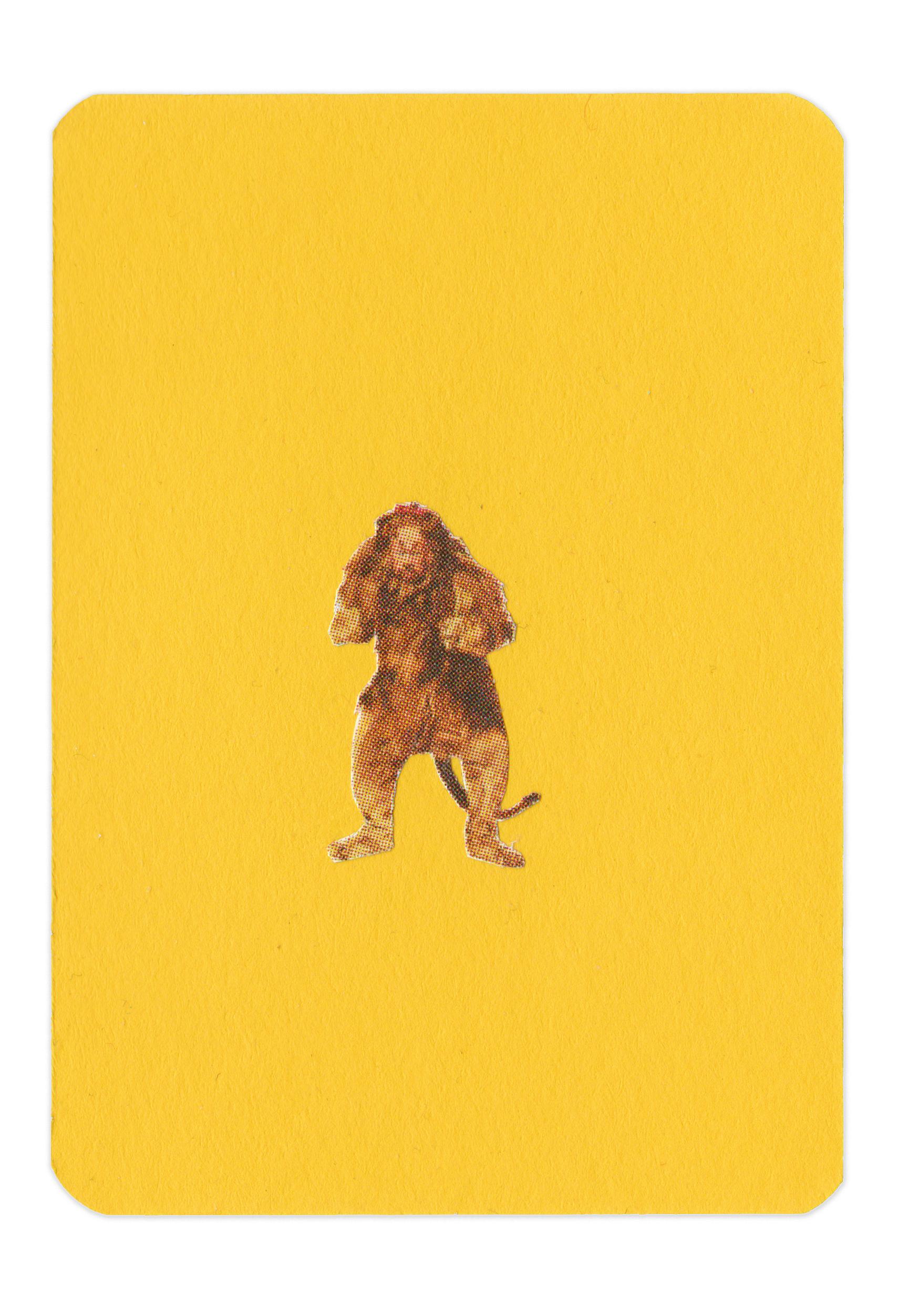Color_Yellow_Lion.jpg