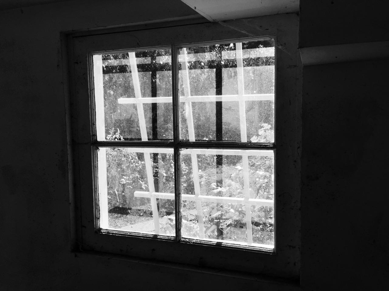 window - 1.jpg