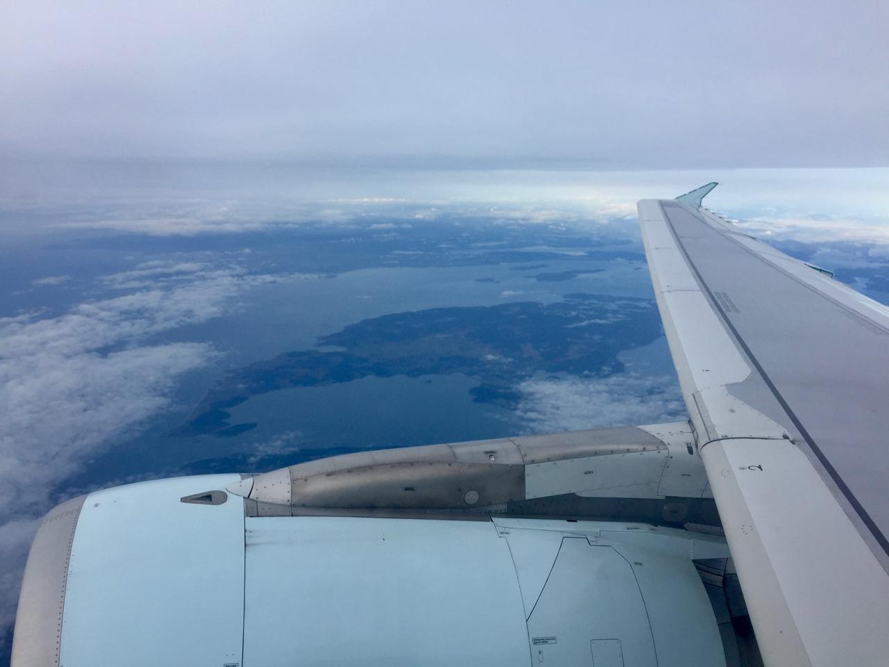 wing - 1.jpg