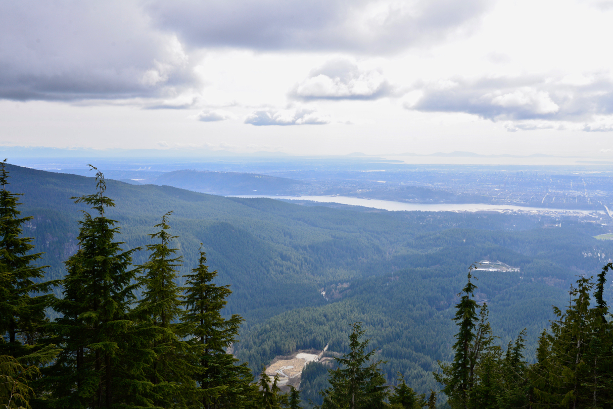 Lynn Peak Hike - 5.jpg