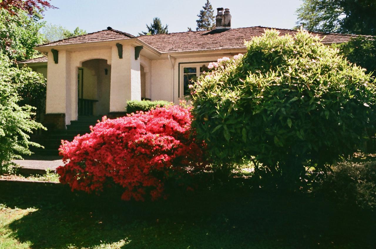 househunting - 2.jpg