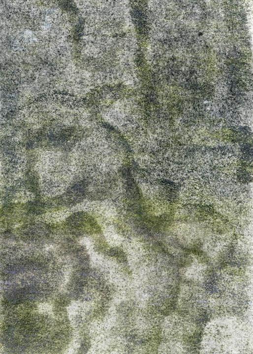 81003.jpg
